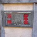 12.02.21.吉原神社(台東区)