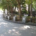 上野恩賜公園(台東区)