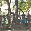 天海僧正毛髪塔(台東区。都営上野恩賜公園)