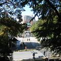 10.11.11.不忍池 弁天堂(台東区。都営上野恩賜公園)遠景
