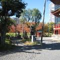 Photos: 不忍池 弁天堂(台東区。都営上野恩賜公園)