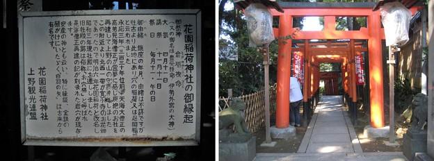 10.11.11.花園稲荷神社(台東区。都営上野恩賜公園)