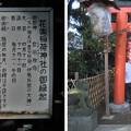 Photos: 10.11.11.花園稲荷神社(台東区。都営上野恩賜公園)