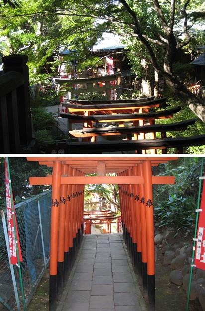 花園稲荷神社(台東区。都営上野恩賜公園)