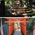 Photos: 花園稲荷神社(台東区。都営上野恩賜公園)