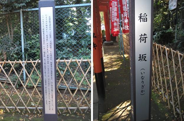 花園稲荷神社(台東区。都営上野恩賜公園)稲荷坂