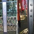 Photos: 花園稲荷神社(台東区。都営上野恩賜公園)稲荷坂