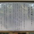 Photos: 10.11.11.大佛パゴダ ・上野大仏(台東区。都営上野恩賜公園)