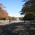 Photos: 上野恩賜公園(台東区)