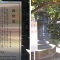 10.11.11.上野東照宮(台東区。都営上野恩賜公園)