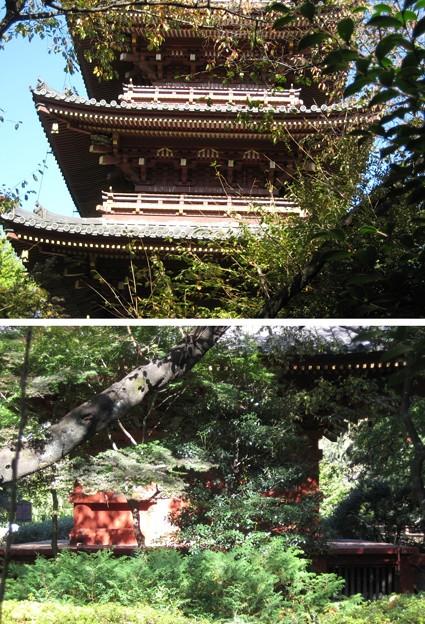 Photos: 10.11.11.上野東照宮(台東区。都営上野恩賜公園)五重塔