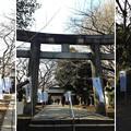 Photos: 15.01.05.上野東照宮(台東区。都営上野恩賜公園)
