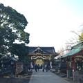 Photos: 上野東照宮(台東区。都営上野恩賜公園)