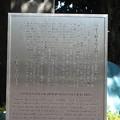 10.11.11.寛永寺(台東区)旧本坊表門