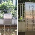 Photos: 10.11.11.寛永寺(台東区)慈海僧正墓