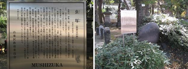10.11.11.寛永寺(台東区)虫塚