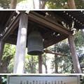 10.11.11.寛永寺(台東区)銅鐘