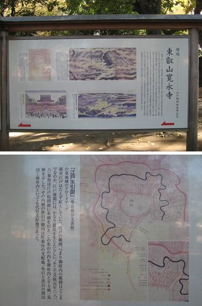 10.11.11.寛永寺(台東区)