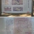 Photos: 10.11.11.寛永寺(台東区)