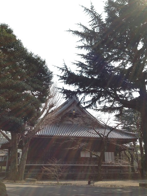 14.03.12.寛永寺(台東区)本堂