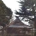 Photos: 14.03.12.寛永寺(台東区)本堂