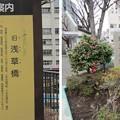 Photos: 11.03.24.浅草見附跡(台東区浅草橋)