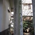 Photos: 銀杏岡八幡神社(台東区浅草橋)