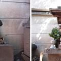 12.03.26.銀杏岡八幡神社(台東区浅草橋)