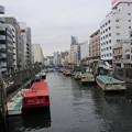 Photos: 11.03.24.柳橋(台東区・中央区)