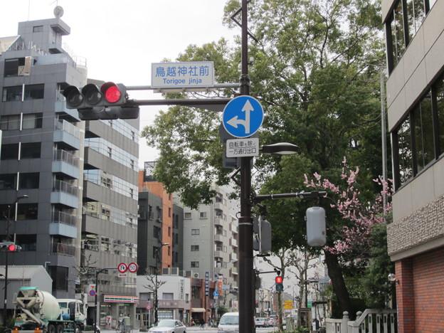 11.03.24.鳥越神社前交差点(台東区鳥越)