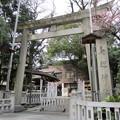 鳥越神社(台東区鳥越)南側鳥居