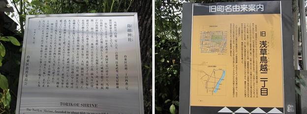 11.03.24.鳥越神社(台東区鳥越)