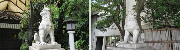 15.05.31.鳥越神社(台東区鳥越)