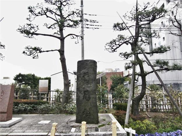 蔵前橋 西詰南側(台東区蔵前)首尾の松