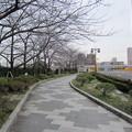 蔵前橋 西詰北側(台東区蔵前)