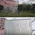 Photos: 11.03.24.蔵前橋 西詰北側(台東区蔵前)