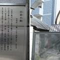 Photos: 11.03.14.永久寺(台東区三ノ輪)