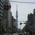 Photos: 土手通り(台東区日本堤)