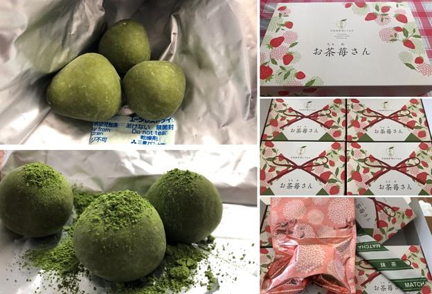 お茶苺さん(●´ω`●)(伊藤久右衛門)