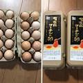 Photos: 名古屋コーチンの卵へ( ̄ρ ̄へ))))) ウヘヘヘヘ 0