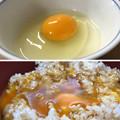 Photos: 名古屋コーチンの卵へ( ̄ρ ̄へ))))) ウヘヘヘヘ 2