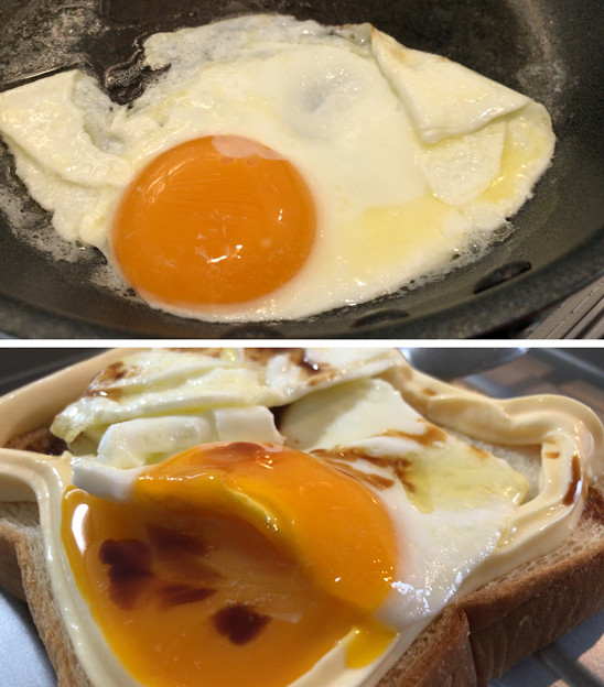 名古屋コーチンの卵へ( ̄ρ ̄へ))))) ウヘヘヘヘ 4