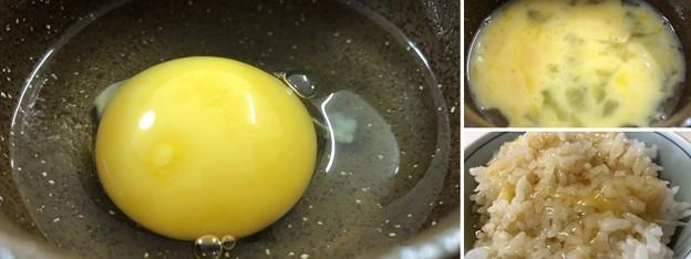 軍鶏の卵3