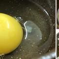 Photos: 阿賀野軍鶏の卵3