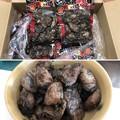 Photos: 宮崎地頭鶏
