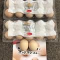 香川烏骨鶏のたまご
