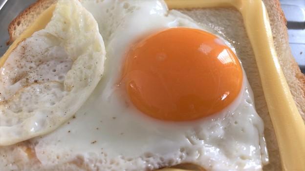 香川烏骨鶏のたまご――4目玉焼き