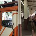 Photos: 黒部峡谷鉄道 トロッコ電車(黒部市)