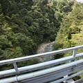 Photos: 黒部峡谷鉄道 後曳橋(黒部市)