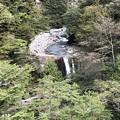黒部峡谷 奥鐘橋より(黒部市)